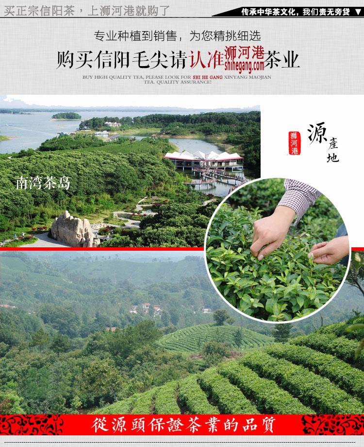 阿里云茶庄园2021新茶信阳毛尖 雨前一芽二叶 新茶500g热卖 实惠耐泡口味重