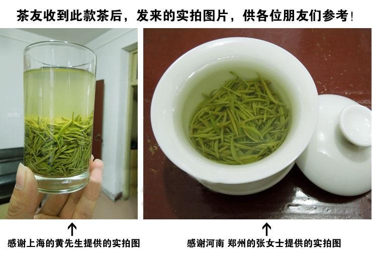 茶叶 散装毛尖 浉河港|信阳毛尖【明前特级】2019新茶 绿茶 500g起批特价