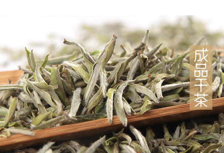 周开启茶业 河南白茶 信阳白茶2018明前头采嫩芽茶 浉河港茶厂批发
